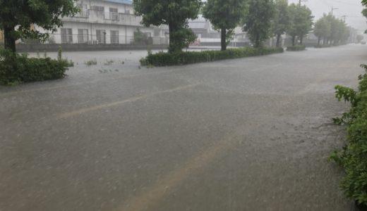 水災と風災リスク